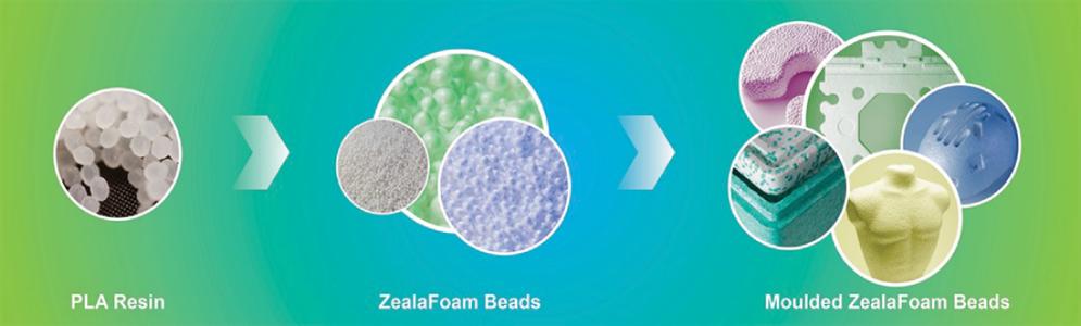 ZealaFoam - Biopolymer Network